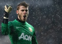 LONDON, ENGLAND - JANUARY 20:  David De Gea of Manchester United celebrates as Robin van Persie of Manchester United scores the opening goal during the Barclays Premier League match between Tottenham Hotspur and Manchester United at White Hart Lane on January 20, 2013 in London, England.  (Photo by Clive Mason/Getty Images)