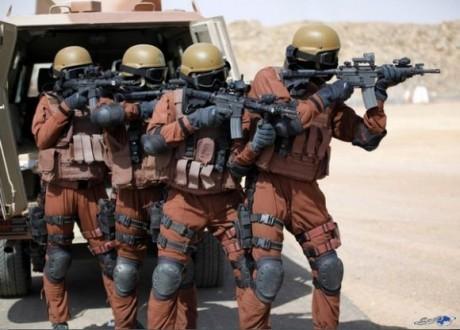 ما الذي تفعله قوات النخبة السعودية في عدن ؟!