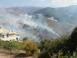 اندلاع حريق في احراج عمشيت