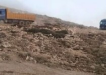 waste-lebanon(2)