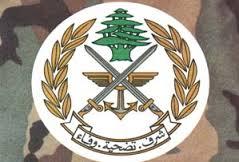 الجيش: الفحوصات المخبرية أثبتت أن الجثة للجندي محمد حمية