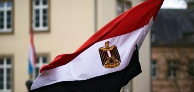 مصر تجدد مشاركتها في التحالف العربي في اليمن لمدة عام