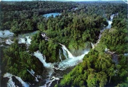 أسباب تجعل الأمازون أغرب الأماكن في الأرض