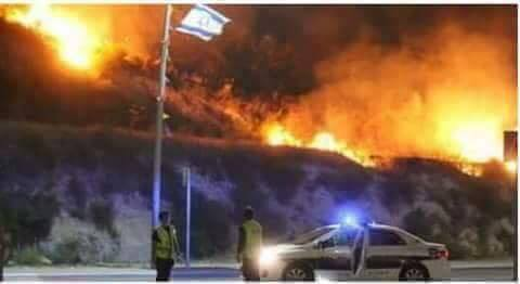 463c5a21e امتداد الحرائق إلى حيفا وإجلاء نحو 60 ألف مستوطن   Mulhak - ملحق ...