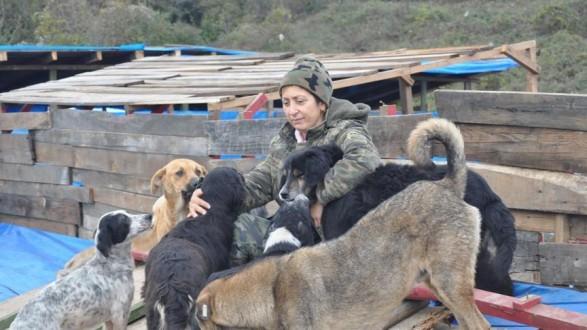 امرأة تضرب عن الطعام دفاعا عن الحيوانات المشردة