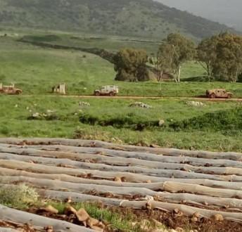 القوات الاسرائيلية تنفذ عملية تمشيط في محور العباسية الغجر