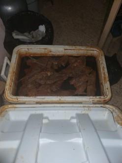 03379ebad مواد غذائية فاسدة في 4 مستودعات تكشفها سرية الضاحية | Mulhak - ملحق ...