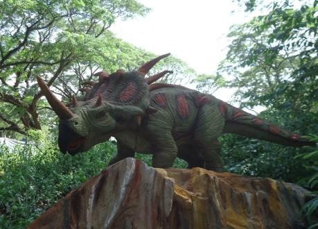 العثور على جلد ديناصور بحالة رائعة