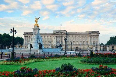 فئران في القصر الملكي !
