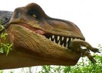 ديناصور-يأكل