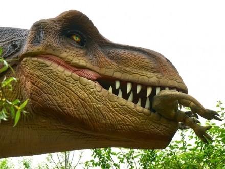 """اكتشاف كائن """"لم تسبق رؤيته سابقا"""" في معدة ديناصور!"""