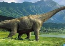 معلومات_عن_الديناصورات