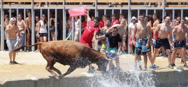 """مهرجان """"الثيران في البحر"""" في إسبانيا"""
