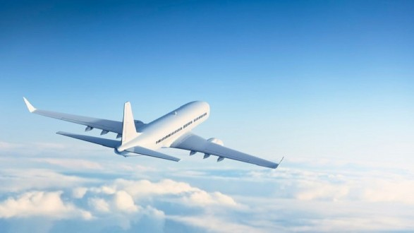 """أغرب """"مسافر"""" على متن طائرة في التاريخ"""