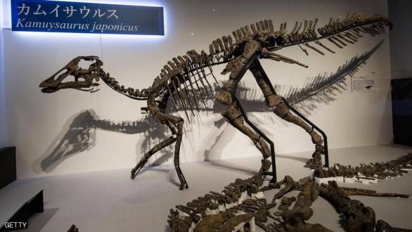 """""""إله التنين"""".. اكتشاف نوع جديد من الديناصورات في اليابان !"""
