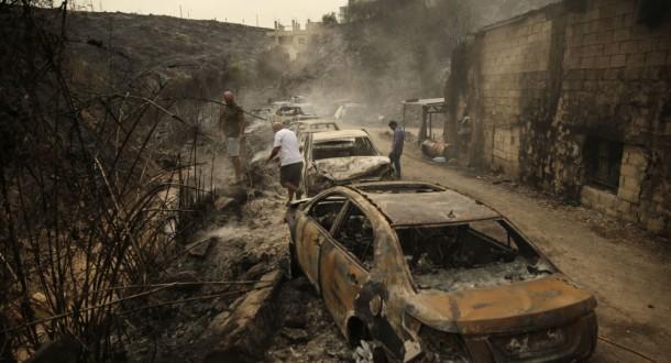 بعد كارثة الحرائق.. حملات التحريج مفيدة أم مضرّة؟  وهل تتحقق العدالة البيئية على يد الطبيعة نفسها؟