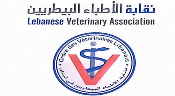 نقابة الأطباء البيطريين: لم تسجل إصابات عالميا للحيوانات الأليفة بفيروس كورونا ولا انتقال منها إلى الإنسان